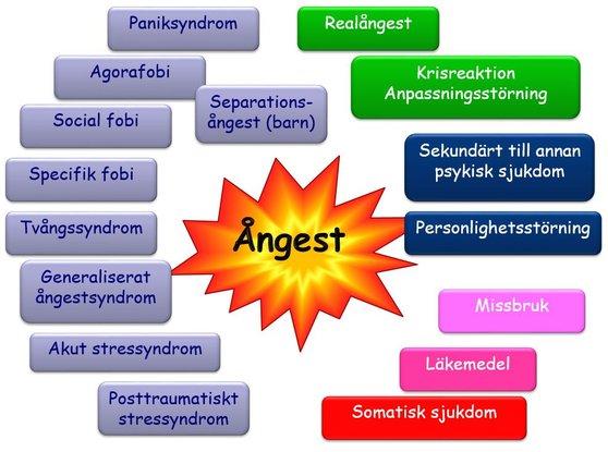 posttraumatiskt stressyndrom test